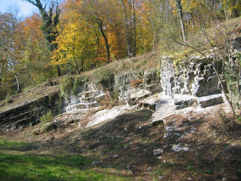 Ehemaliger Steinbruch im Sonderwaldreservat Sonnenberg, Bild ecolinnea