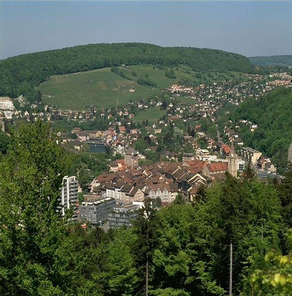Lebensraum_Stadtwald_Bild_Verena_Eggmann
